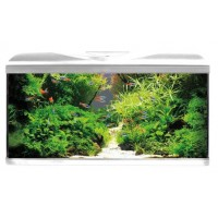 Acquario Completo AMTRA SYSTEM 80 LED WHITE  80...