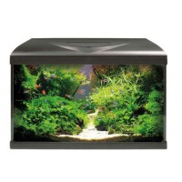 Acquario Amtra System 60 led Black 65 litri completo