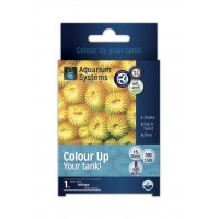 AS PROGRAMM COLOR UP MARINE